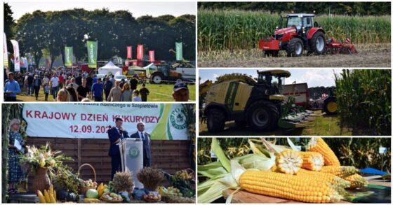Szepietowo. Krajowy Dzień Kukurydzy wPODR